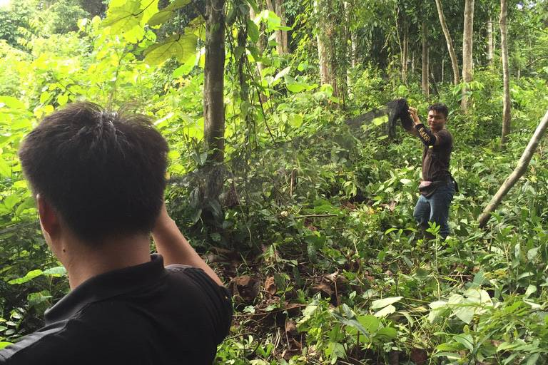 Preventing zoonotic spillover events - setting up bat trap in the forest
